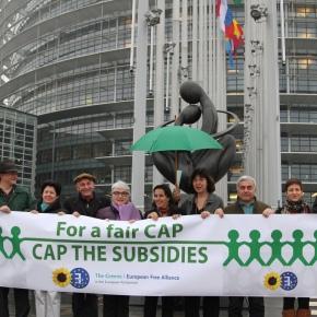 PAC 2014-2020 : une ambition trop modeste… au détriment de l'environnement