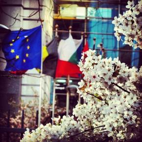 Qu'a fait l'Europe pour vous ? 24-30 mars2014